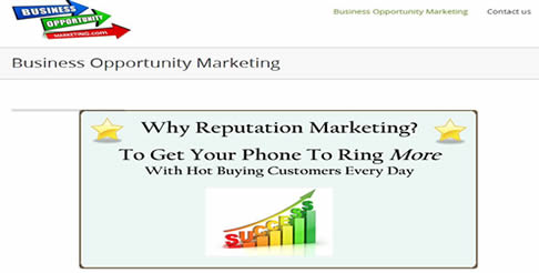 Business Opportunity Marketing